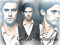 Milo - milo-ventimiglia wallpaper