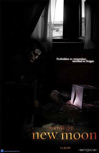 New Moon Poster (fanmade)