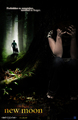 New Moon Poster (fanmade) - twilight-series photo