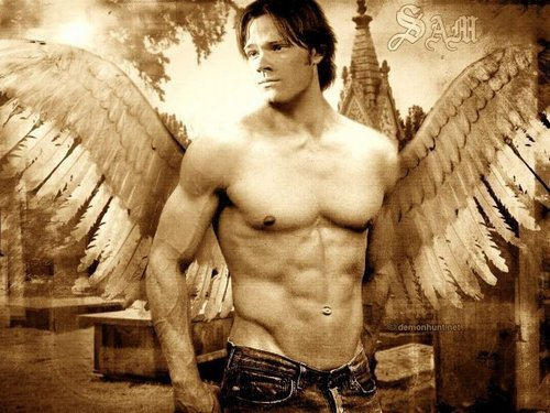supernatural fondo de pantalla containing a pedazo, hunk and a six pack titled Sam Hot