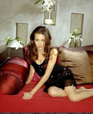 Amy Acker achtergrond entitled Session 5 Photoshoot
