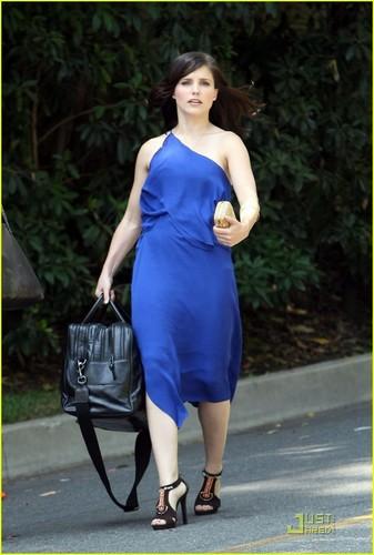 Sophia arbusto, bush is Blue for Bags