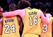 lakers - los-angeles-lakers icon