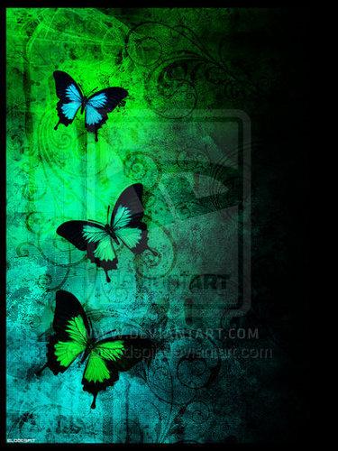-Butterflies♥