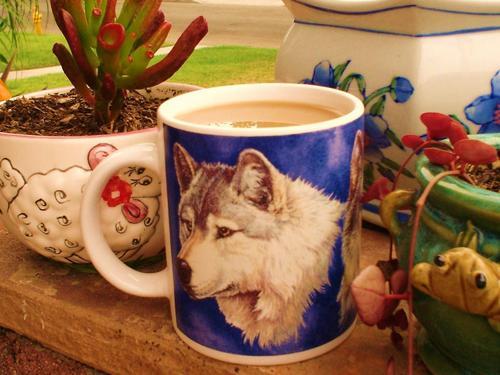Alcide's favorite mug