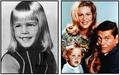 Family Album - bewitched photo