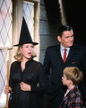 Bewitched - bewitched photo
