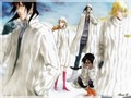 Bleach_winter