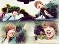 Boys Before Flowers - boys-over-flowers wallpaper