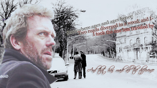 Dr. Gregory House wallpaper probably with a street called House banner
