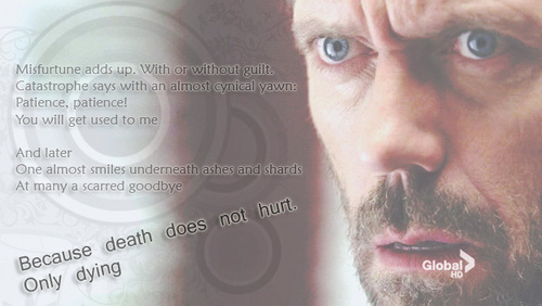 Dr. Gregory House wallpaper containing a portrait titled House banner