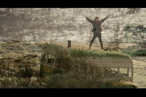 Into the Wild 壁紙 called Into the Wild