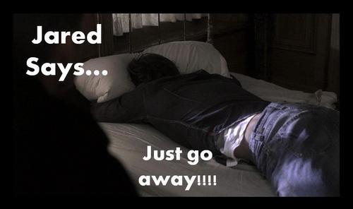 Jared Says...
