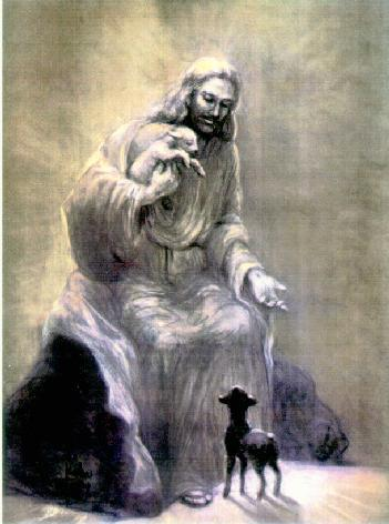 Jesus With Small Animals - jesus Photo