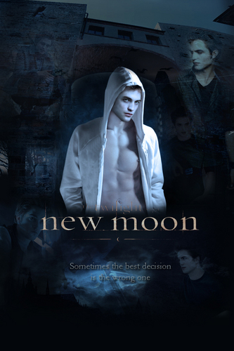 Twilight Series wallpaper called New Moon Posters