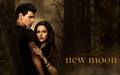 New Moon Wallpaper HD