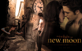 twilight-series - New Moon Wallpaper wallpaper