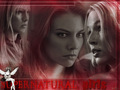 SPN girls - the-girls-of-supernatural wallpaper