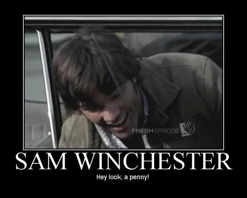 萨姆·温彻斯特