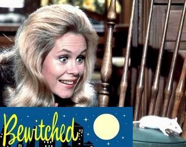 Bewitched wallpaper titled Samantha and ???