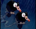 The Vultures - snow-white-and-the-seven-dwarfs photo