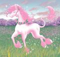 rosa Dancer