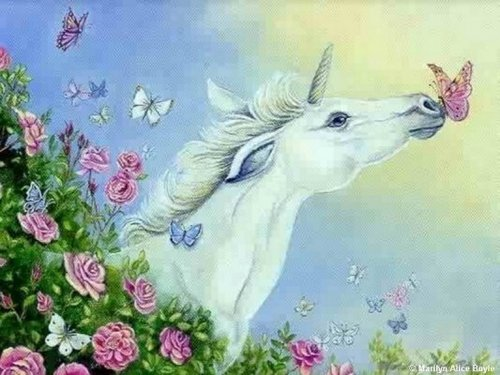 Unicorns and more