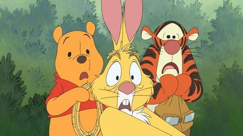 Winnie l'ourson fond d'écran containing animé titled Winnie the Pooh, Rabbit and Tigger