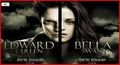 bellward - twilight-series photo