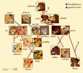 family tree - the-lion-king photo