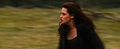 new moon trailer - twilight-series photo