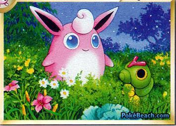 pokemon TCG artwork