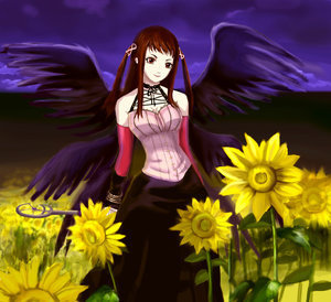 Rosario Vampire wallpaper possibly with a bouquet, a compass plant, and a black eyed susan entitled ruby