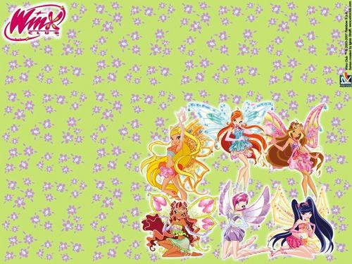 o clube das winx wallpaper probably containing animê called winx club gang