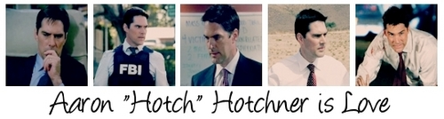 Aaron Hotchner is Love