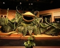 Audrey II - little-shop-of-horrors photo