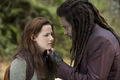 BELLA AND LAURENT  HD - twilight-series photo