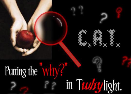 Critical Analysis of Twilight