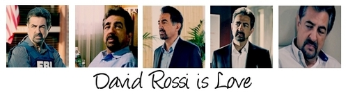 David Rossi is Love