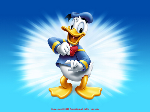 disney wallpaper titled Donald pato wallpaper