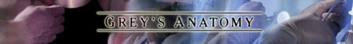 Grey's banner