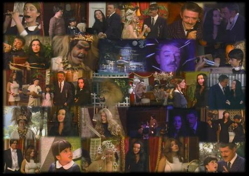 ハロウィン With The New Addams Family 1977 MONTAGE