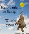 Herb's Got Talent - fanpops-got-talent fan art