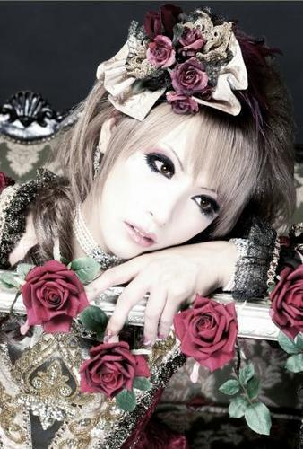 Versailles wallpaper containing a bouquet, a camellia, and a rose entitled Hizaki