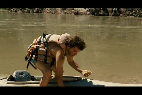 Into the Wild images Into the Wild HD wallpaper and background photos