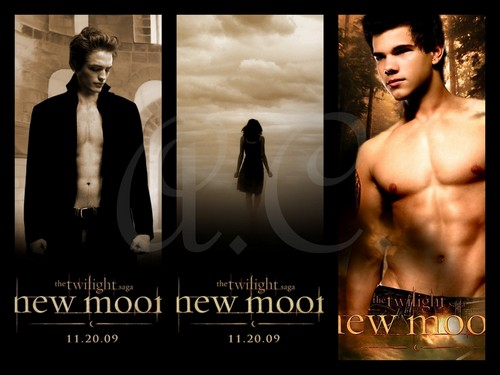 Twilight Saga Filem kertas dinding with a portrait called New Moon <3