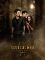 Official French New Moon Poster (Tentation)
