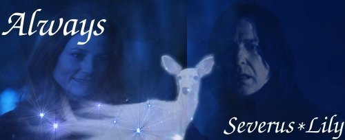 Severus 6 Lily banner