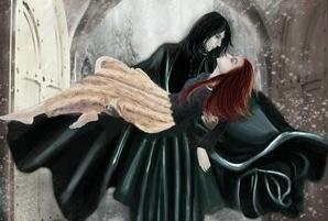 Severus + Lily = 爱情