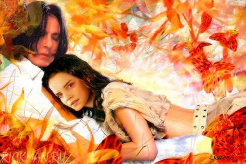 Snape&Hermione